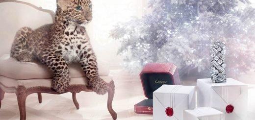 CartierChristmasleopard
